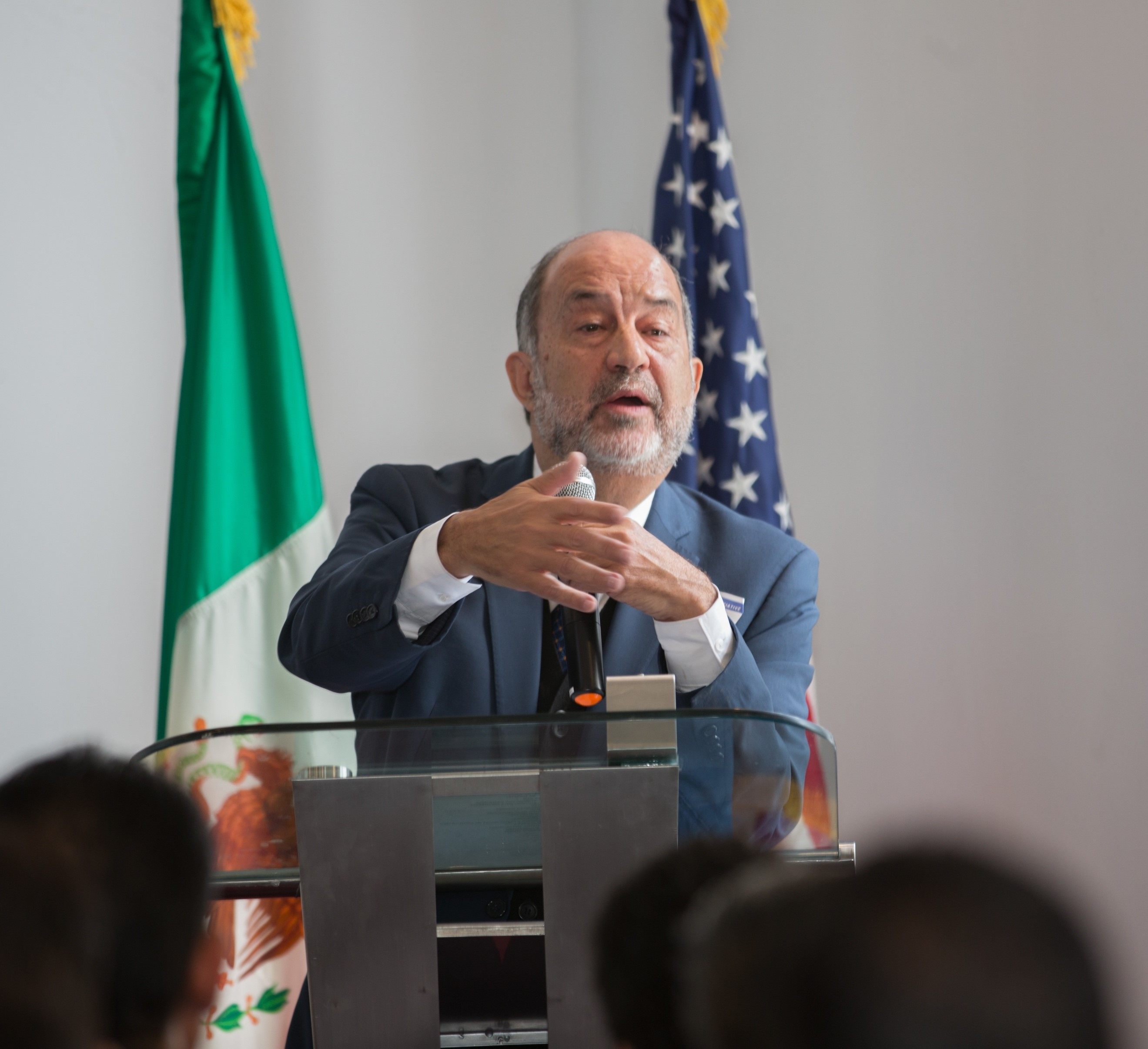 Image of Odon de Buen, Director General, National Commission for the Efficient Use of Energy in Mexico (CONUEE)